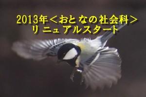2013年リニュアル
