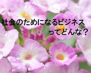 IMG_3841-2